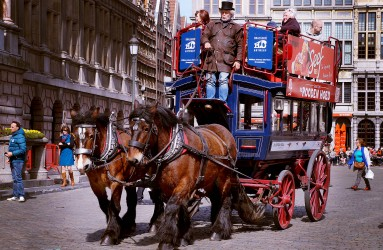 Traditional Means of Transportation